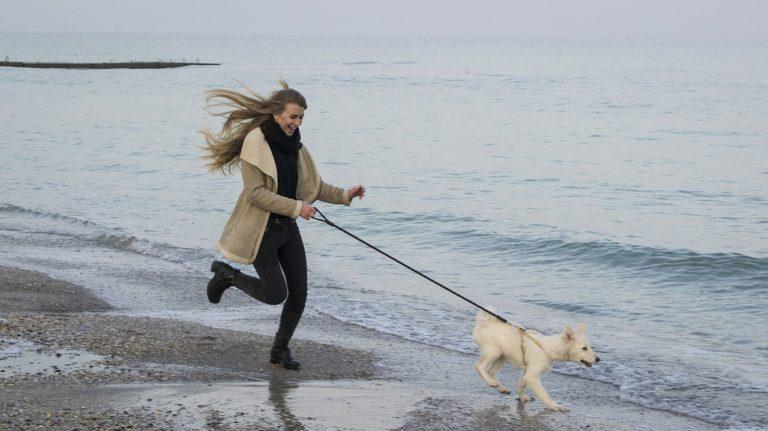 #Hundproblem är de även hundens problem?